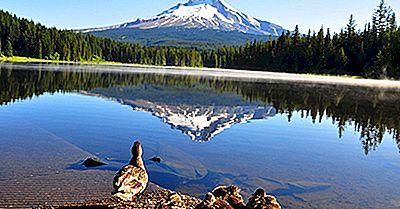 I 10 Picchi Più Alti In Oregon