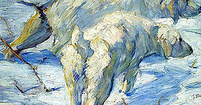 Movimientos De Arte A Lo Largo De La Historia: Der Blaue Reiter