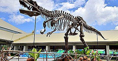 Os Maiores Dinossauros