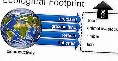 Paesi Con Le Più Grandi Impronte Ecologiche