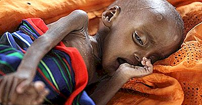 Les Pays Les Plus Malnutris Du Monde