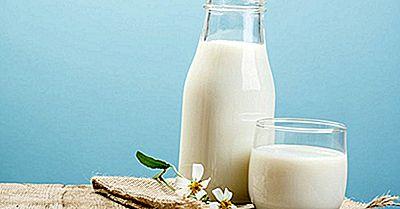 Top Milk Produzindo Países No Mundo
