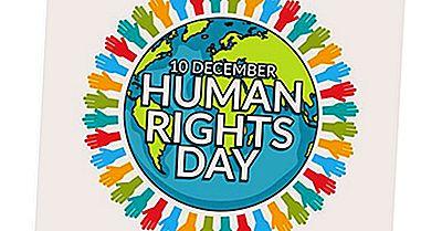 Hva Og Når Er Menneskerettighetsdagen?