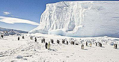 Quali Sono Le Origini Dei Nomi Artico E Antartico?