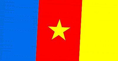 Que Signifient Les Couleurs Et Les Symboles Du Drapeau Camerounais?