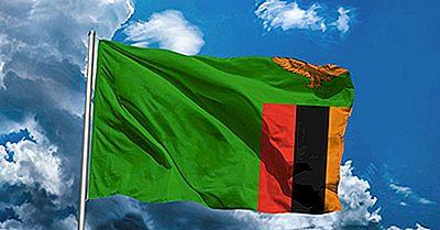 Cosa Significano I Colori E I Simboli Della Bandiera Dello Zambia?