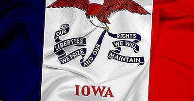 ¿Qué Aspecto Tiene La Bandera Del Estado De Iowa?