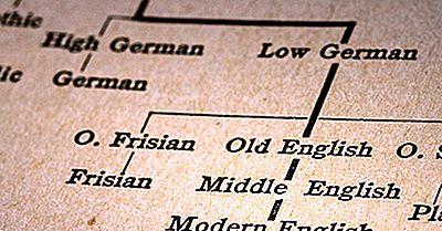 Hvilke Språk Er Deler Av Indo European Language Family?