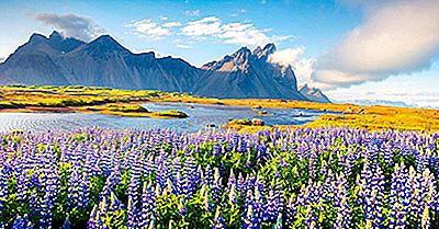 De Ce Este Islanda Verde Și Gheața Groenlandei?