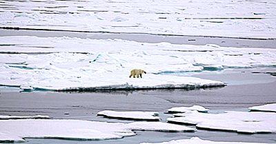 Por Que O Ártico Não É Considerado Um Continente?